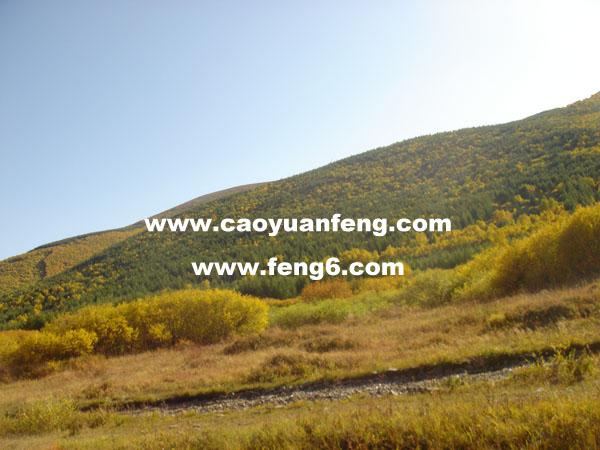 09年9月22日丰宁坝上柳树沟深处风景 最新照片集